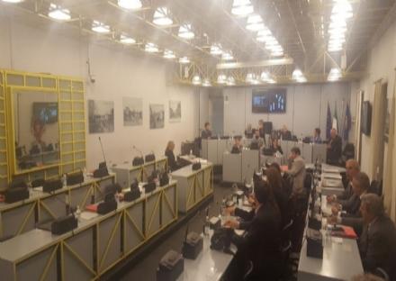 MONCALIERI -  Dopo 10 anni di polemiche il Consiglio approva il progetto Dea