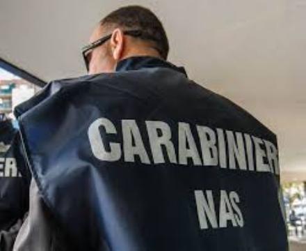 NICHELINO - Ristoratore denunciato per scarafaggi tra i fornelli