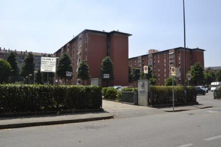 NICHELINO - In via Parri la sistemazione del verde la fanno i residenti