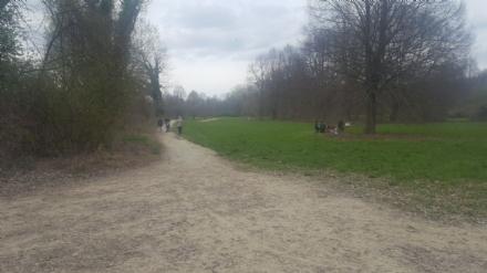 MONCALIERI - Trovato uomo impiccato nel parco delle Vallere