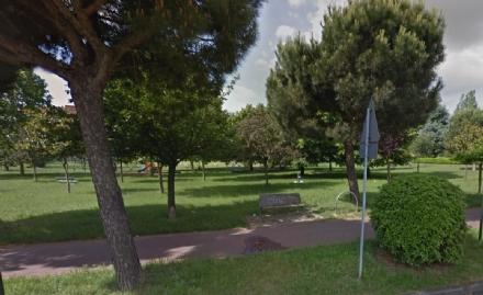 NICHELINO - Taglio del verde pubblico, la ditta vince lappalto ma non si presenta al cantiere