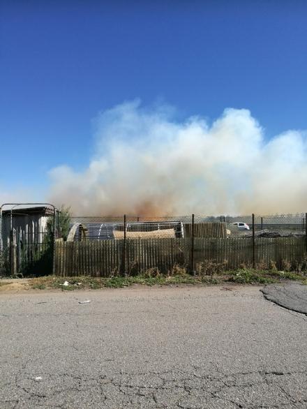 BEINASCO - Incendio di rifiuti e sterpaglie vicino alla tangenziale - LE FOTO -