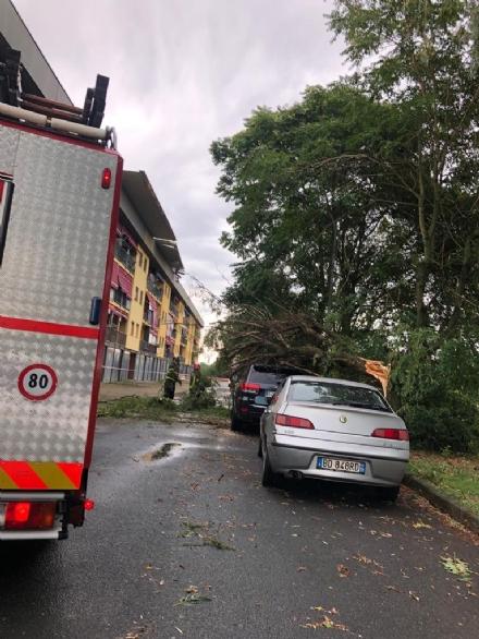 CARMAGNOLA - Tromba daria si abbatte sulla città: danni ingenti