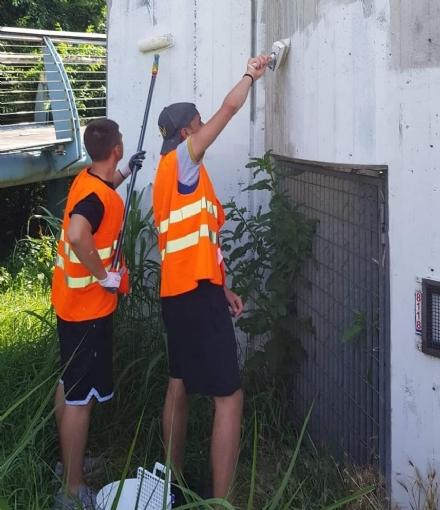 BEINASCO - I ragazzi che ridipingono panchine e muri per abbellire la città