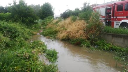 MONCALIERI - Troppa acqua nel Mongina, allagamenti alla comunità Terra Mia