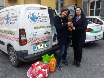 NICHELINO - La polizia locale aiuta il canile di Chieri per linverno