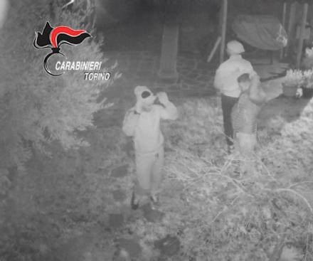 CRONACA - Furti nelle case: banda italo-albanese arrestata dai carabinieri - VIDEO