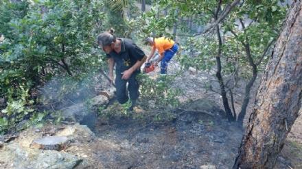 PIOSSASCO - Fiamme sul monte San Giorgio. Lincendio è stato spento dai volontari Aib e dai vigili del fuoco