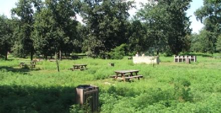 NICHELINO - Chiuso il parco del Boschetto e tutte le aree gioco bimbi