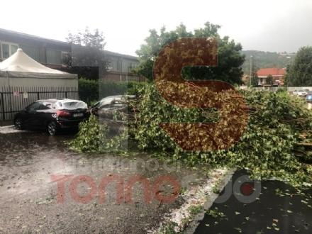 MALTEMPO - Bomba dacqua e grandine a Moncalieri, strade imbiancate e alberi abbattuti - FOTO E VIDEO