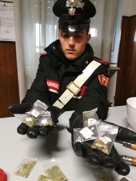 """MONCALIERI - Arrestato il """"rappresentante della marijuana"""""""