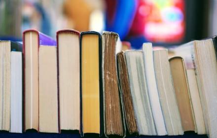 CULTURA - Le biblioteche di Moncalieri, Nichelino e Beinasco coinvolte nel progetto Sapere digitale