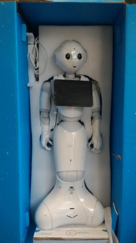 ORBASSANO - Due robot abbandonati trovati dalla polizia locale in zona San Luigi