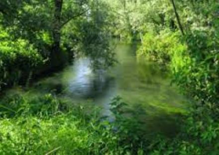 """NICHELINO - """"Acque chiare"""": l'acqua, la vita e l'uomo in mostra alla scuola Martiri della Resistenza"""