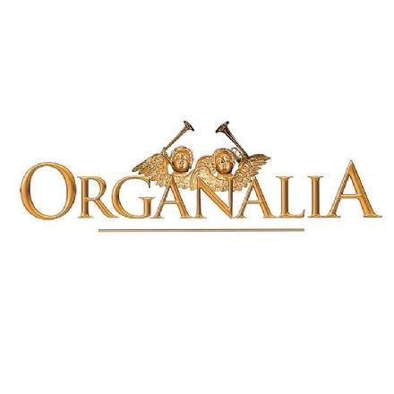 MUSICA - A Moncalieri torna il circuito concertistico Organalia
