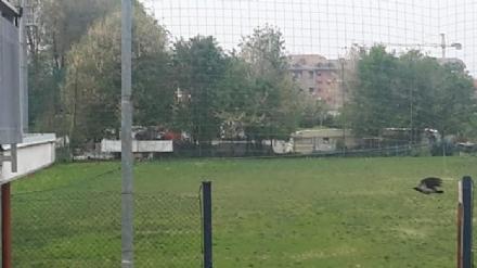 MONCALIERI - Campo nomadi del Colombetto: proteste per fumi e odori molesti