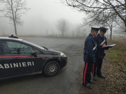 TRAGEDIA A NICHELINO - Ancora nessuna traccia della Volkswagen pirata: la vittima era a Torino per una serata con gli amici