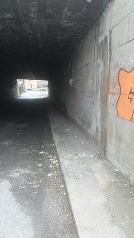 NICHELINO - Crollano i calcinacci: chiuso il sottopasso di via Brescia