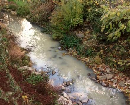 PIOSSASCO - Allarme inquinamento per il torrente Sangonetto