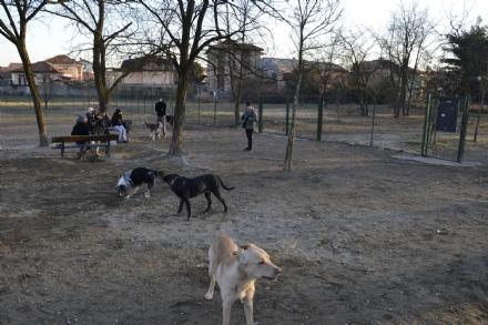 NICHELINO - Aumentano le aree cani sul territorio