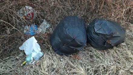 ORBASSANO - Continuano gli abbandoni di rifiuti sulla provinciale 6