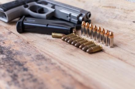 RIVALTA - Forzano una finestra e rubano due pistole