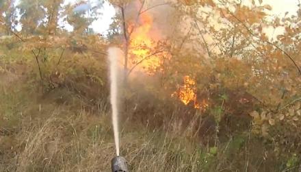 CINTURA SUD - Fioccano gli incendi di sterpaglie: vigili del fuoco impegnati in diverse zone