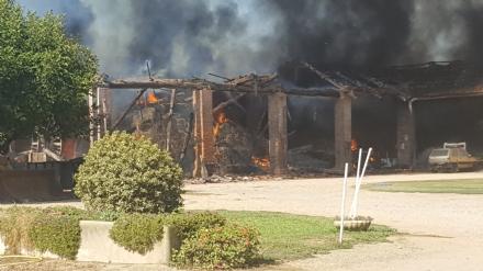 ORBASSANO - Brucia il fienile di cascina Gorgia - FOTO E VIDEO