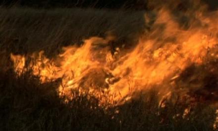 MONCALIERI - Paura per un incendio in un campo di via Enzo Ferrari