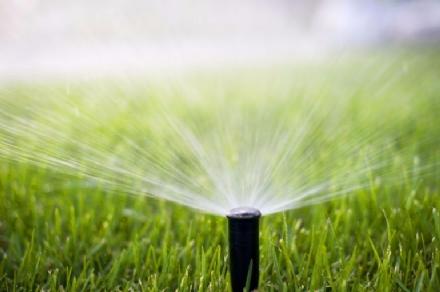 CARMAGNOLA - La siccità mette in ginocchio le colture della zona