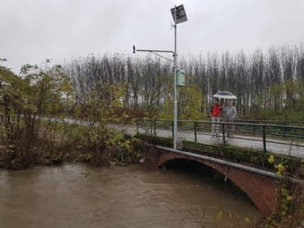 MALTEMPO - Sale il livello del Chisola: esondato nei campi a Piobesi e Volvera