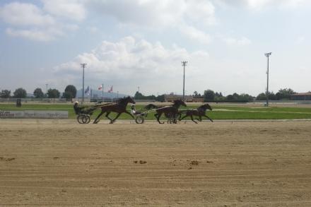 VINOVO - Parte la stagione delle corse in notturna allippodromo con spettacoli per tutta lestate