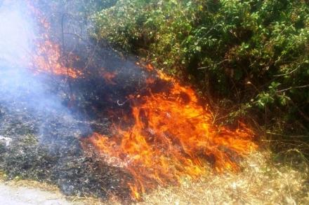 BEINASCO - Tentano di dare fuoco a sterpaglie a Borgaretto