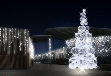 NICHELINO - Cristina Chiabotto madrina di MondoJuve. Oggi accende lalbero di Natale