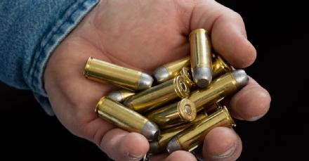RIVALTA - Entrano in casa e rubano fucile con una quarantina di munizioni