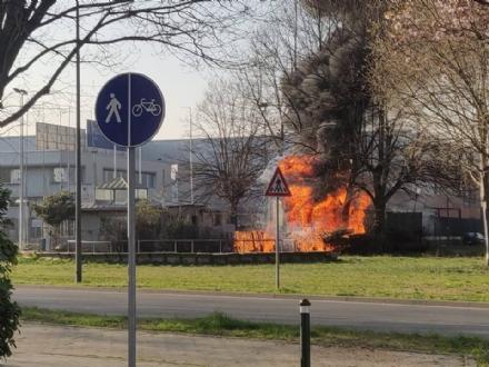 BEINASCO - A fuoco un container a Borgo Melano