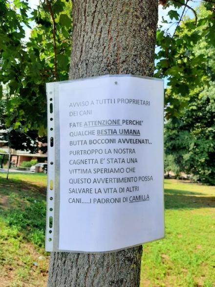 NICHELINO - Bocconi avvelenati in via Buonarroti: appesi cartelli di allerta