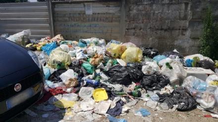 CARMAGNOLA - Appuntamento a «Carmagnola beach» per i forzati della tintarella, ma sulla spiaggia restano troppi rifiuti