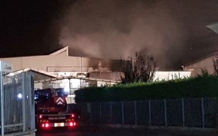 LA LOGGIA - Brucia un capannone in via Baracca, paura in zona industriale