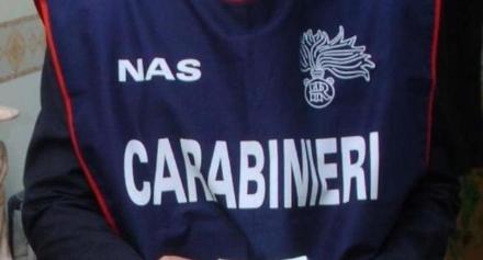 ORBASSANO - Insetti e alimenti scaduti in un ristorante pizzeria: blitz dei carabinieri del Nas