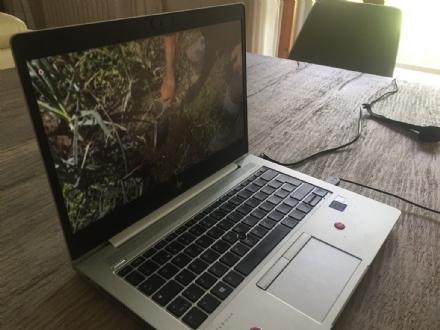MONCALIERI - Listituto Centro storico sperimenta la tele gita virtuale per gli alunni