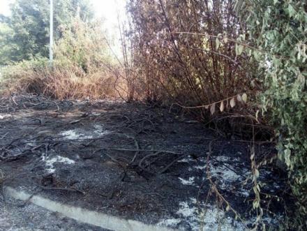 MONCALIERI - A fuoco la rotatoria di Via Bertero davanti le scuole