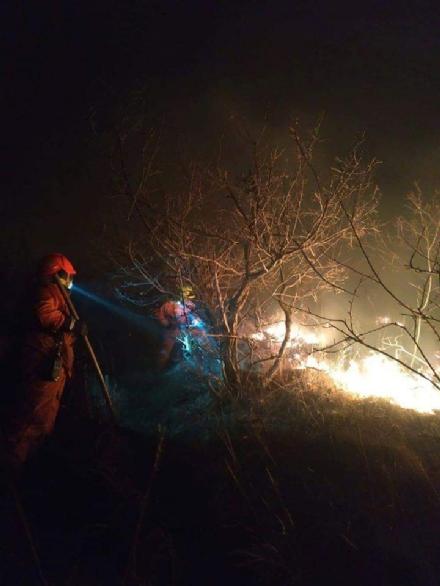 SANGANO - Incendio sul monte San Giorgio sotto la punta Pietraborga