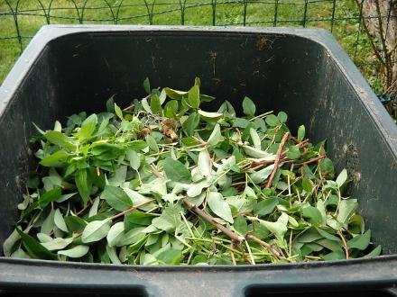 MONCALIERI - Aumentano i costi per chi produce i rifiuti da giardino