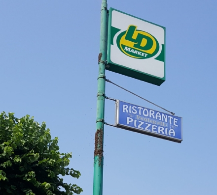 BEINASCO - Un altro sciame dapi a Beinasco: transennato il marciapiede di fronte al Market Ld