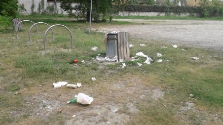 NICHELINO - Al Boschetto maleducati ancora in azione