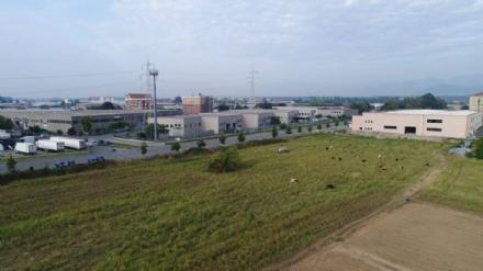 NICHELINO - Nella zona industriale Vernea un nuovo polo logistico per 200 posti di lavoro