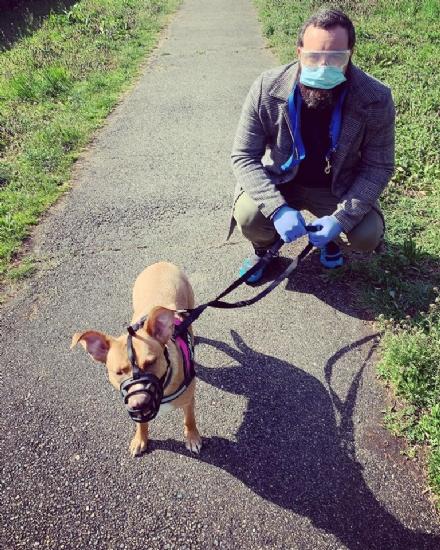 NICHELINO - E partito Sos passeggiata, per portare fuori i cani di chi è in quarantena