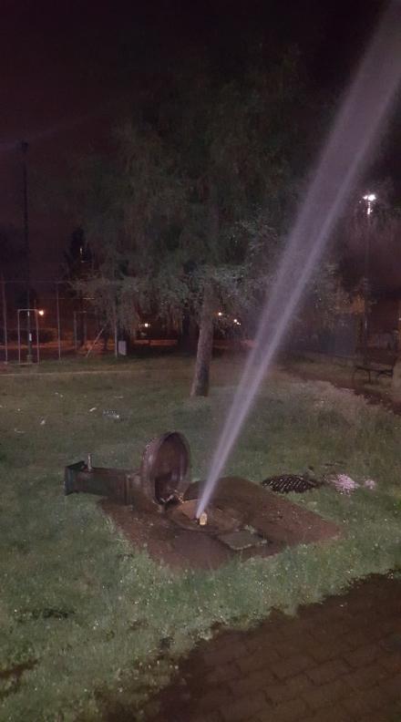 ORBASSANO - Vandali in azione nei giardini di Via Allende. Terzo raid in due mesi