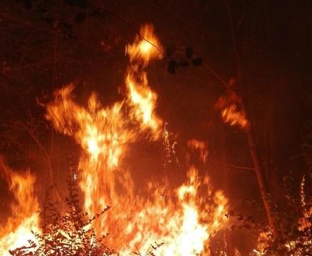 CARIGNANO - Ancora un incendio di sterpaglie, questa volta in zona strada del Mare